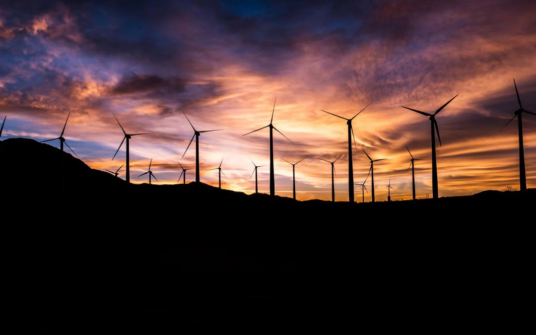 Renewable Energy Project: Wind Farm Project and Transmission.  2020 – 2021. Vietnam